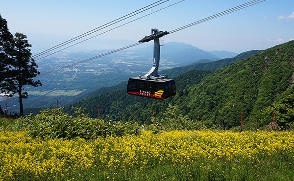 高低差783mを最速3分で標高1100mまで運行する日本一の速さを誇るロープウェイ。121人乗りで車いすでの利用も可能です。(シーズンによって景観を楽しむため速度を